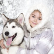 Stock Photo: Malamute dog with girl