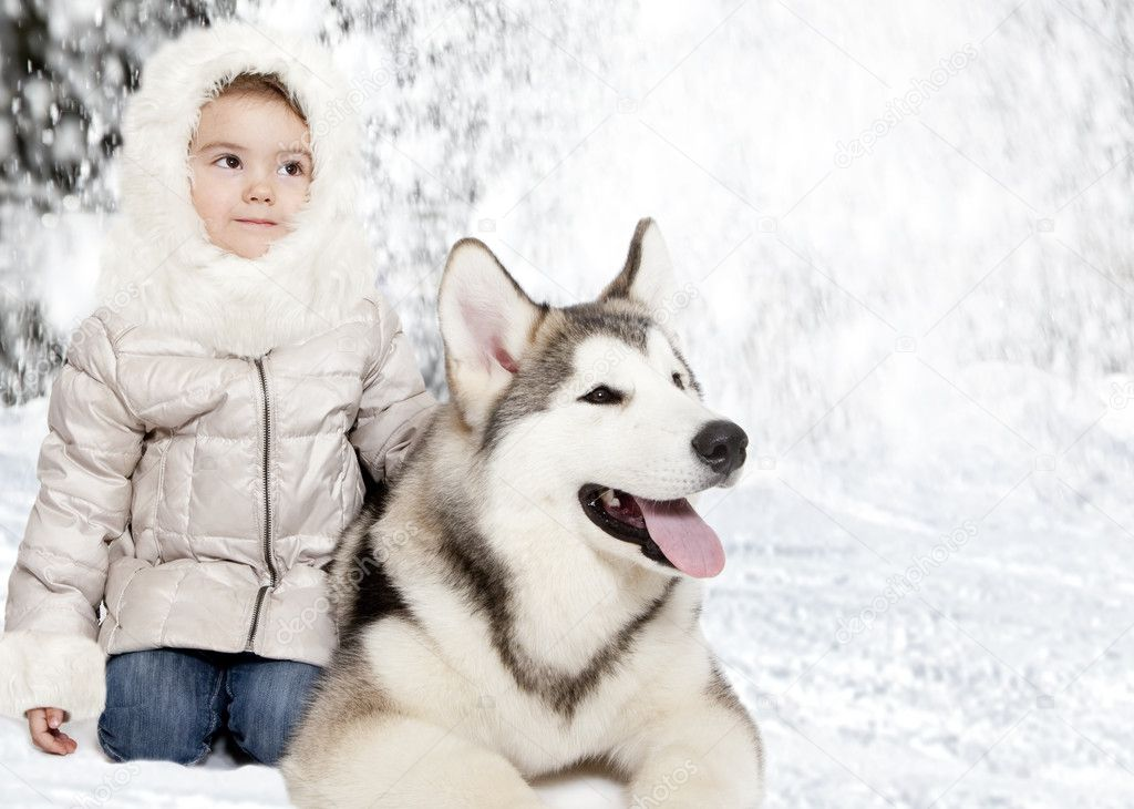 Five month old malamute puppy with a little girl — Stock Photo #9864947