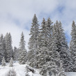 Stock Photo: Winter Landscape in Austrian Alps