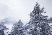 Foggy mountains in winter — Stock Photo