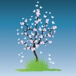 Vector sakura tree — Stock Vector