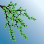 branche d'arbre — Vecteur