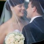 sposi baciarsi sotto il velo — Foto Stock