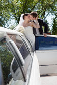 Newlywed Couple Standing Beside Limousine — Stock Photo