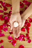 Hands on rose petals — Stock Photo
