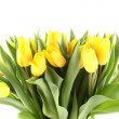 Tulips Bouquet — Stock Photo #8829678