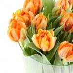 Tulips Bouquet — Stock Photo #8870995