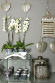 Home decor objects — 图库照片