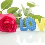 czerwona róża i tekst o miłości — Zdjęcie stockowe