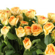 Bouquet of roses — Stock Photo #9206465