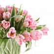 Stock Photo: Pink tulips