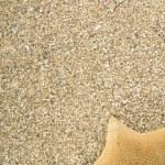 Starfish on sand — Stock Photo #9732708