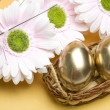 Easter golden eggs — Stock Photo #9806428