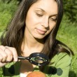 Checking the apple on the natural — Stock Photo #9829970