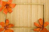 Orange tiger lily — Stock Photo