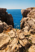 Rocky shore on Lokrum island — Stock Photo