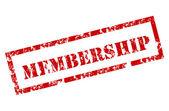 Membership rubber stamp — Stock Vector