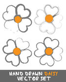 Hand drawn Daisy Set Vector — Stock Vector