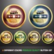 Colorful 100% Guarantee 'Premium Quality' Button Set — Stock Vector