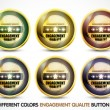 Stock Vector: Colorful Engagement Qualite button Set