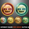 Colorful 100% Service Button Set — Stock Vector