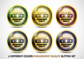 Colorful Engagement Qualite button Set — Stock Vector
