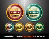Colorful 100% Service Button Set — Stock Vector