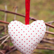 Stock Photo: Hanging heart on grape branch