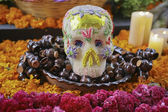 Day of the dead — Stockfoto
