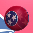 Tennessee state — Stock Photo