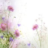 Hermoso pastel frontera floral hermoso fondo borroso (sha — Foto de Stock