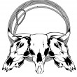 Skulls bulls and lasso — Stock Vector