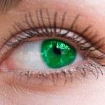 Beautiful woman green eye — Stock Photo #10166271