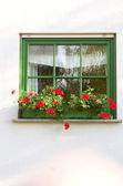 Ornated window — Stock Photo