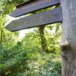 Stock Photo: Old wooden road guide sign