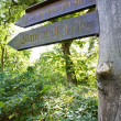 Stockfoto: Old wooden road guide sign