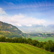 Stock Photo: Green field in mountain valley in Alp