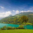 Lac de la montagne majestueuse en Suisse — Photo