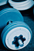 Dumbbells on gym floor — Stock Photo