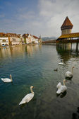 瑞士 — 图库照片
