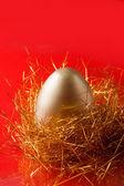 золотое яйцо — Стоковое фото