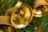 Golden bells on christmas tree — Stock Photo