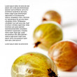 Gooseberries — Stock Photo