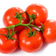 Ripe red tomatoes with water drops over white — Stock Photo