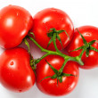 Ripe red tomatoes with water drops over white - Stock Photo
