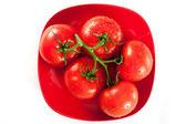 Dojrzałe pomidory czerwone krople wody na białej — Zdjęcie stockowe