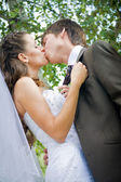 Nevěsta a ženich líbat — Stock fotografie