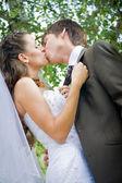Panna młoda i pan młody całuje — Zdjęcie stockowe