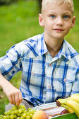 Boy opens picnic bag with fruits — Stock Photo