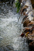 Brook stream with waterfall — Stock Photo